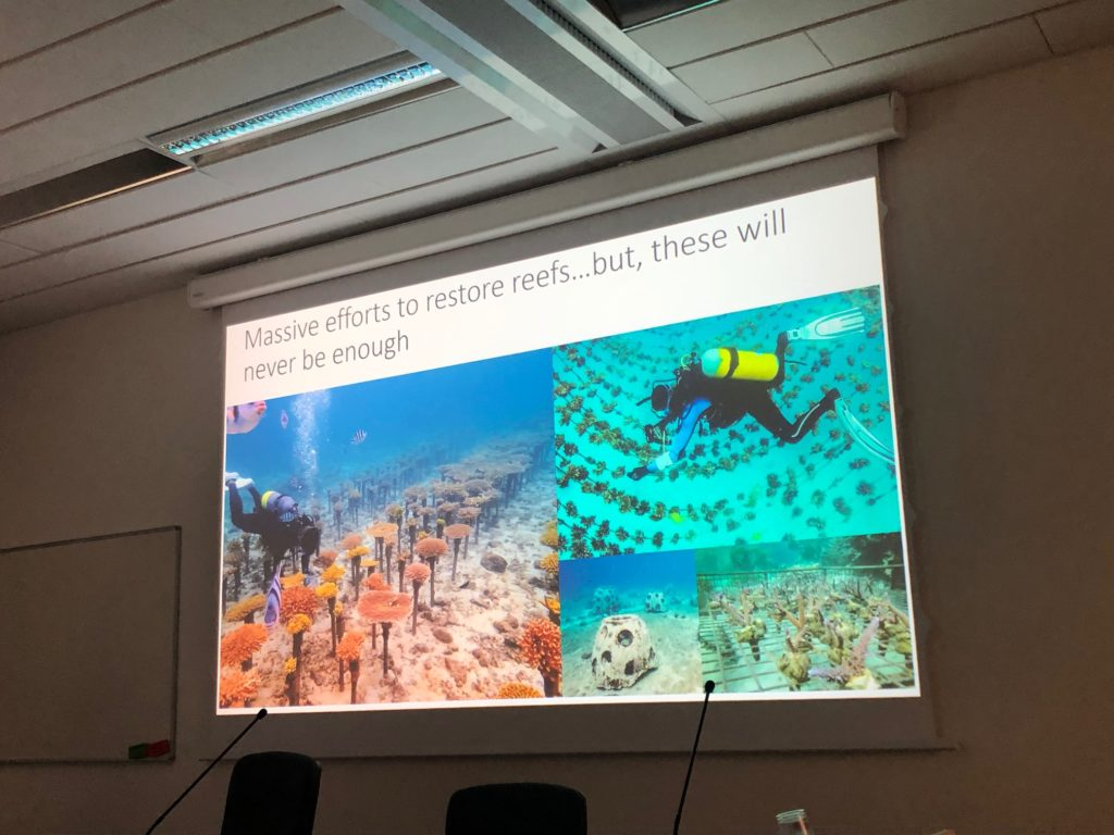 13th International Symposium on Fossil Cnidaria and Porifera