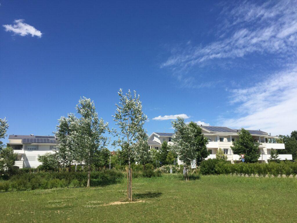 Progettazione del Verde in Ecovillaggio